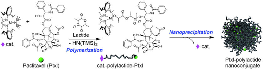 drug-polymer conjugate via controlled ring-opening polymerization
